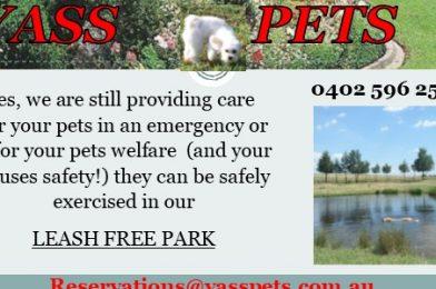 Yass Pets
