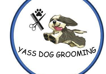 Yass Dog Grooming